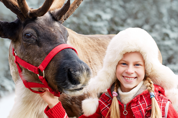 meet reindeers when you take a day trip to Lapland